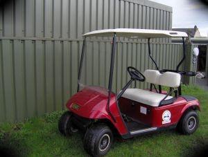 E-Z-Go Golf carts, e-z-go txt pertol